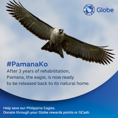 Pamana Globe Telecom Advocacy Eagle Davao Philippine Duane Bacon